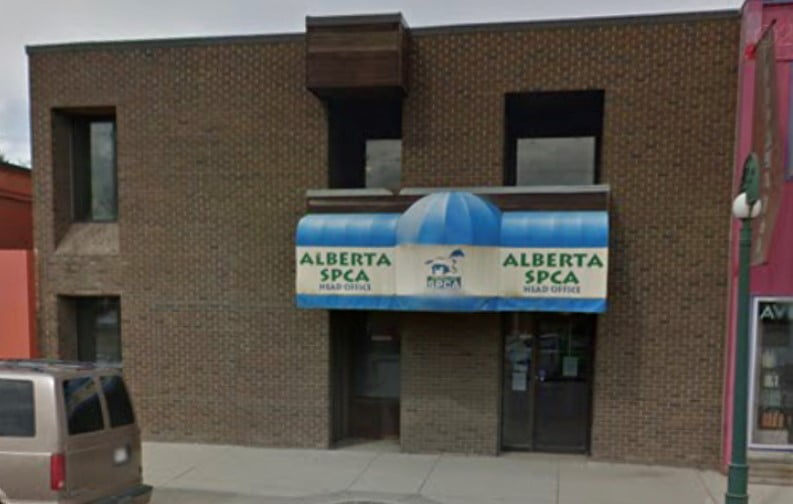 Edmonton Office Space Purchased